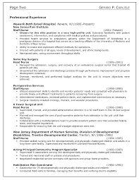 Professional Nurse Resume Template Cv Writing Nursing