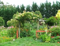 Plants For Patios In The Shade 19 Best Pergola Plants Climbing Plants For Pergolas And Arbors