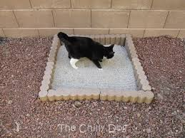 black friday litter boxes amazon tutorial outdoor cat litter box the chilly dog