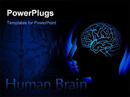 templates for powerpoint brain ppt on human brain 34 best brain powerpoint templates human brain