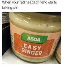 Ginger Memes - the best ginger memes memedroid