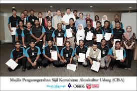 cisa blue archipelago berhad 2015