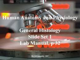 Pearson Anatomy And Physiology Lab Manual Human Anatomy And Physiology Ppt Video Online Download
