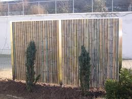 bambus sichtschutz xxl nigra super sichtschutz terrasse pflanzen