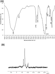polysaccharide from garlic straw extraction structural data