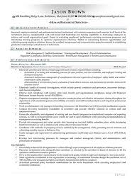 director human resources resume human resources resume examples resume professional writers
