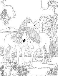 best 25 coloriage cheval ideas on pinterest coloriages de
