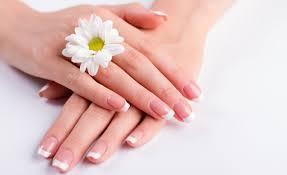 majestic nail spa nail salon 11750 us hwy 380e 320
