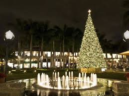 virginia beach christmas lights 2017 where to see christmas lights in miami and fort lauderdale