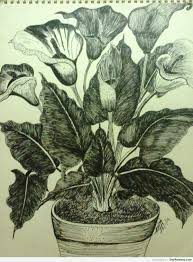 ink painting of a flower pot desipainters com