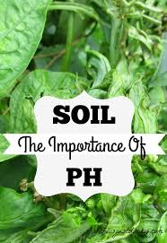 ph for vegetable garden part 40 to determine how much lime or
