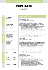executive resume templates word executive resume exles format for sales in automobile account