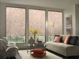 living room with modern pet friendly window treatments pet
