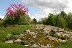 Rock Garden Perennials by Carolyn U0027s Big Rock Garden In Massachusetts Fine Gardening