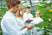 studium garten und landschaftsbau gartenbau studiengang
