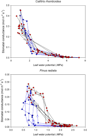bagged the gs page 2 abscisic acid mediates a divergence in the drought response of two