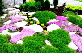Backyard Easy Landscaping Ideas by Easy Landscaping Ideas For Backyards Best Simple Using Mulch