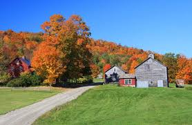 Vermont travel tech images Plan your perfect day and we 39 ll tell you where to travel this fall jpg