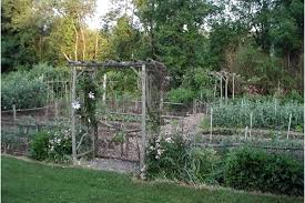 vegetable gardens can please eye as well as palate csmonitor com