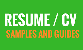 sample job application resume cv template and a guide on how to