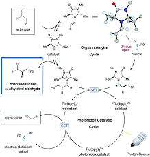 photocatalysis in organic and polymer synthesis chemical society