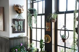 Floor To Ceiling Window A Baltimore Loft Filled Floor To Ceiling With Plants Front Main