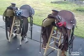 Horse Saddle by Western Horse Saddle Craftsmanship Or Cheap Shortcuts Horse