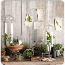 cool terrarium ideas android apps on google play
