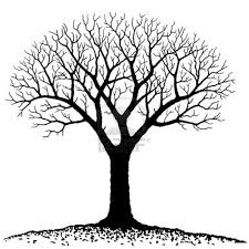 black and white images of trees free clip free