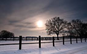 winter nature wallpapers fence snow winter nature wallpaper 1920x1200 30063