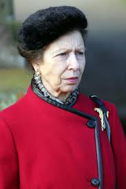 princess anne u0027s prized pig mauled by wild boar london evening