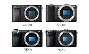 sony a5100 black friday sony a6000 ilce 6000 camera news at cameraegg