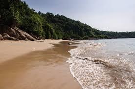 Walk In The Park Beach House Lyrics - jungle beach in sri lanka nerd nomads
