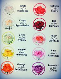 reference for writers nelladee know your roses guys or you just