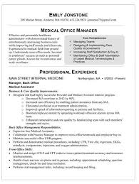 Sample Resume With Summary Statement by Resume Summary Statement Example Professional Resume Summary