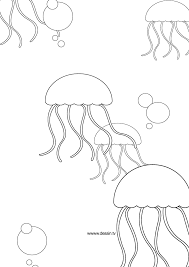 impressive jellyfish coloring pages inspiring 7744 unknown