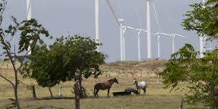 renewable energy foreign money keeping the lights on in nicaragua