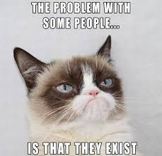 Cat Internet Meme - i understood the internet s obsession with cats the moment i became