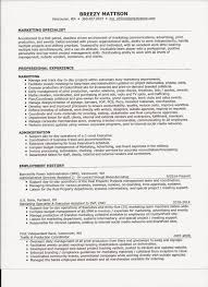 C Level Executive Resume Breezy Mattson