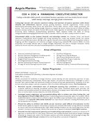 Executive Officer Resume Ppt Ceo Resumes 5 8mb Sample Ceo Resume Sample Resume Format
