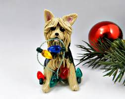 terrier breeds the magic sleigh