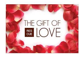 valentines specials valentines day gifts philadelphia valentines daybeauty aficionado