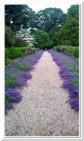 landscaping ideas front house walkway condointeriordesign com