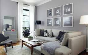 Gray Living Room Ideas Fiorentinoscucinacom - Gray color living room