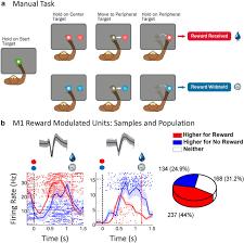 toward an autonomous brain machine interface integrating