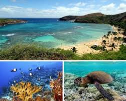 best 25 trips to hawaii ideas on vacation to hawaii