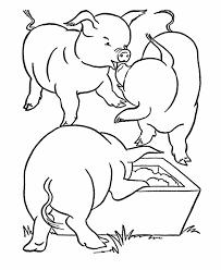 pig sheets coloring