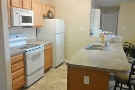 Apartment Therapy Kitchen by Small Bathroom Ideas Apartment Therapy Home Design Interior And
