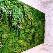Garden Ridge Wall Art by Moss Is New Paint How To Create Art With Moss Moss Wall