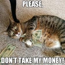 Take My Money Meme Generator - money cat meme generator imgflip